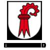 Umzug-Basel-Land