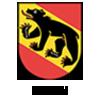 Umzug-Bern
